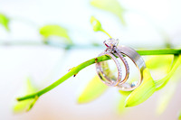 Wedding rings hung from a flower stem